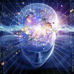 Hiện thân của vũ trụ qua bộ não con người
