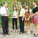 Cây dâu là ứng viên sáng giá cho Quốc dược Việt Nam