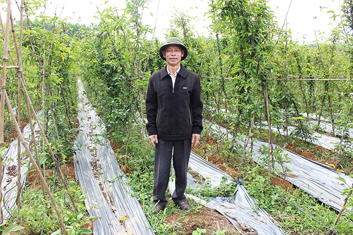 Ông Hà Minh Tuấn, Công ty Bách Thảo Trung Hiếu.
