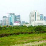 Thúc đẩy phát triển thị trường quyền sử dụng đất nông nghiệp