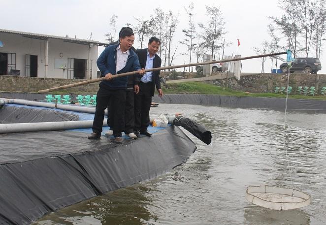 Những mô hình nuôi trồng thủy sản mang lại nguồn thu nhập cho người dân.