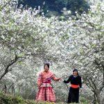 Trải nghiệm văn hóa Điện Biên tại Hà Nội