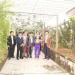 Hà Tĩnh:Nông thôn mới huyện Thạch Hà từ phong trào đi lên cao trào và trở thành khát vọng
