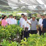 Quyết tâm xây dựng Sơn La trở thành tỉnh phát triển khá trong vùng Trung du và miền núi phía Bắc