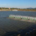 Xã Cẩm Phúc, Cẩm Xuyên, Hà Tĩnh:Lung linh sắc màu trong xây dựng nông thôn mới