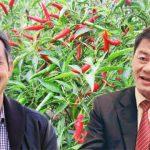 """""""Tay to"""" nhập cuộc, cổ đông chốt lời cổ phiếu Hoàng Anh Gia Lai"""