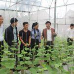 Hà Tĩnh: Phấn đấu đưa huyện Nghi Xuân trở thành huyện Nông thôn mới đầu tiên của tỉnh