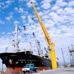 Doanh nghiệp Việt lạc quan về triển vọng thương mại quốc tế