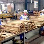 Ngành gỗ Việt Nam cần chuẩn bị gì cho CPTPP?