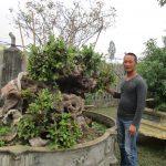 Chàng trai quê lúa Thái Bình Bùi Xuân Triệu: Thành công từ đam mê sinh vật cảnh