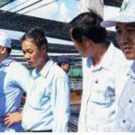 Huyện Vĩnh Lợi : Đẩy mạnh tái cơ cấu sản xuất nông nghiệp