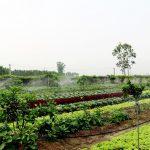Huyện Can Lộc – Hà Tĩnh:  Bước chuyển trong xây dựng nông thôn mới