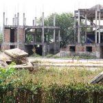 150 triệu đồng/m2 đất rìa làng: Sốt đất ngoại thành, cơn say và cái bẫy