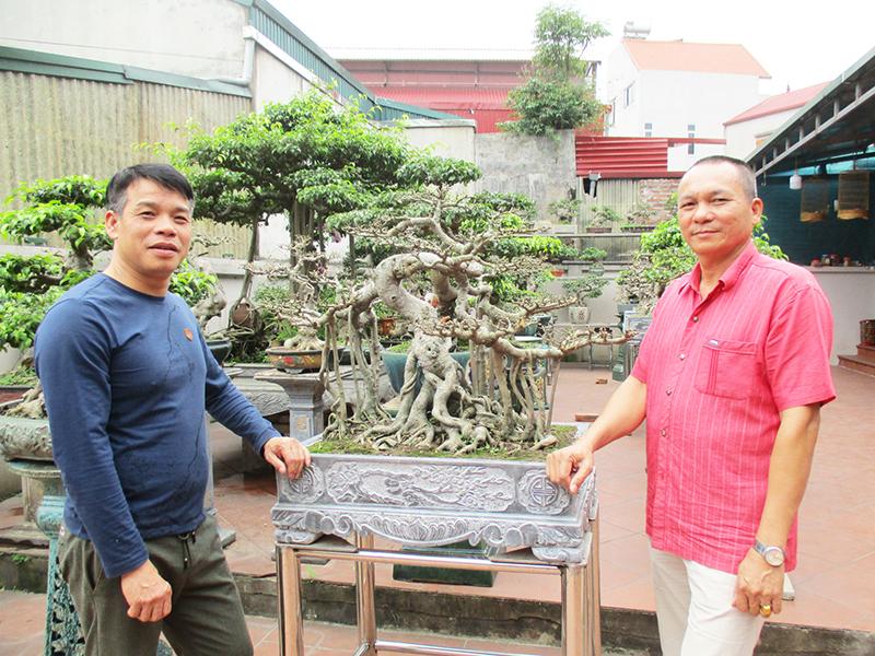 """Anh Nguyễn Ngọc Hùng (bên trái) chia sẻ với phóng viên về quá trình anh """"bén duyên"""" với cây cảnh nghệ thuật."""