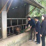 Agribank Thanh Hóa nỗ lực đẩy lùi nạn tín dụng đen