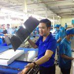 Tiếp tục kiểm tra thông quan 16 doanh nghiệp nhập khẩu hàng Asanzo