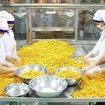 Phát triển doanh nghiệp nông nghiệp theo định hướng xuất khẩu