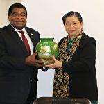 Hoạt động của Phó Chủ tịch Quốc hội Tòng Thị Phóng bên lề IPU 141