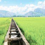 Thanh Hóa: Vĩnh Lộc Phát triển kinh tế xã hội bền vững từ xây dựng nông thôn mới