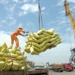 Cơ hội và thách thức đối với nông sản Việt Nam khi thực thi EVFTA