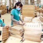 Bộ trưởng Bộ Tài chính yêu cầu lập đoàn kiểm tra việc áp dụng mã HS với gỗ cao su xuất khẩu dạng tấm