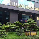 Thaiholdings huy động tiền từ cổ đông để thâu tóm lại Thaigroup