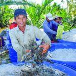 Huyên Hồng Dân: Phát triển nông nghiệp toàn diện,bền vững và hiệu quả