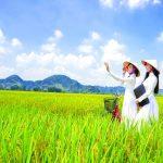 Phụ nữ Việt người xây tổ ấm