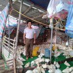 Hà Nội: Cùng bà con ra vườn để có sản phẩm sạch xuất khẩu