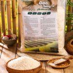 Con đường đưa gạo Séng Cù Mường Lò thành sản phẩm Ocop của nữ giám đốc trẻ
