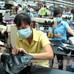 Hỗ trợ doanh nghiệp nắm bắt thông tin về thị trường xuất khẩu