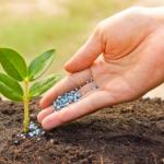 10 mảng kinh doanh nông nghiệp sinh lời nhất năm 2021