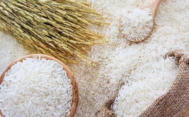 Xuất khẩu gạo: Vượt qua Thái Lan, Việt Nam vững ngôi đầu thế giới