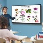 Công nghệ hiển thị – 'trợ thủ' đắc lực số hóa giáo dục