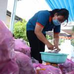 Giúp nông dân tiêu thụ hơn 100 tấn khoai lang tím
