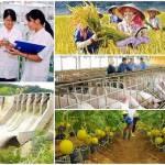 Chính sách khuyến khích doanh nghiệp đầu tư vào nông nghiệp, nông thôn