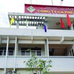 Công ty cà phê ĐẮK UY (Kon -Tum): Vượt khó, giữ vững ổn định sản xuất, kinh doanh